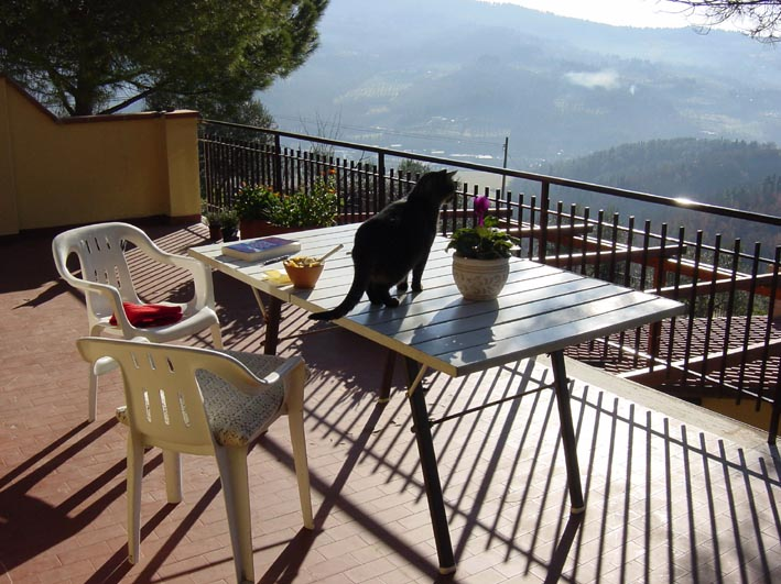 Home-Terrace Shadow & Breakfast